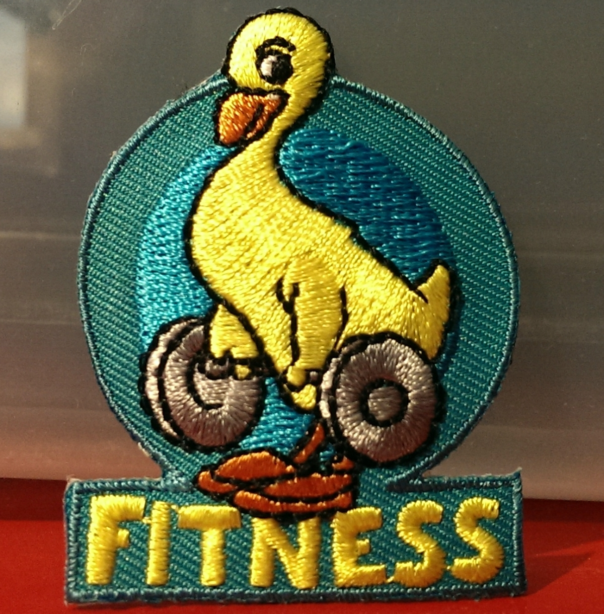 Girl Scouts Fitness Badge